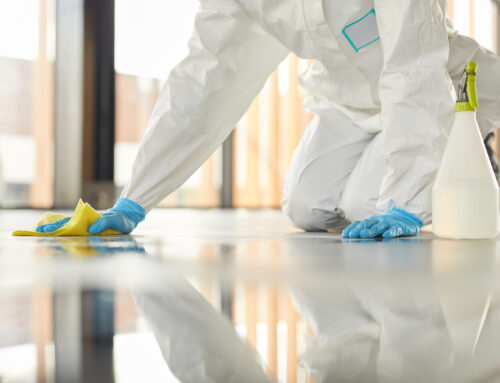 Top 5 Questions To Ask Deep Cleaning and Disinfection Companies